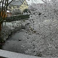schwaney_winter_0002_20120814_1496386888