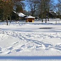 schwaney_winter_0004_20120814_1443959324