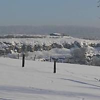 schwaney_winter_0008_20120814_1152194388