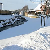 schwaney_winter_0009_20120814_2036330469
