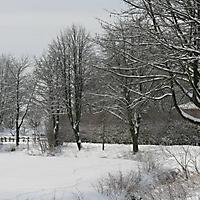 20101228_-_schwaney_-_winterspaziergang_15_20120826_1830078051