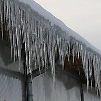 20101228_-_schwaney_-_winterspaziergang_16_20120826_2035198049