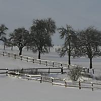 20101228_-_schwaney_-_winterspaziergang_19_20120826_1012750195