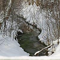 20101228_-_schwaney_-_winterspaziergang_21_20120826_1090270280