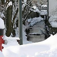 20101228_-_schwaney_-_winterspaziergang_24_20120826_1433456079