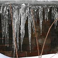 20101228_-_schwaney_-_winterspaziergang_25_20120826_2033376066