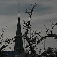 20101228_-_schwaney_-_winterspaziergang_2_20120826_1933726059