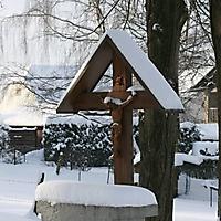 20101228_-_schwaney_-_winterspaziergang_4_20120826_1721824707
