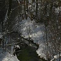 20101228_-_schwaney_-_winterspaziergang_5_20120826_1608034810