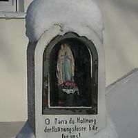 20101228_-_schwaney_-_winterspaziergang_6_detail_20120826_1644691005