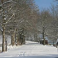 20101228_-_schwaney_-_winterspaziergang_7_20120826_1269787125