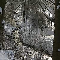 20101228_-_schwaney_-_winterspaziergang_9_20120826_2040371628