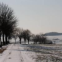 bilder_ueber_schwaney_2012_12_20130211_1619571659