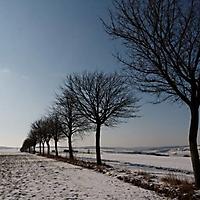 bilder_ueber_schwaney_2012_16_20130211_1205977911