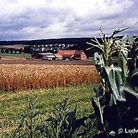 schwaney_05_20120406_1981392653
