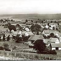 1960_Schwaney