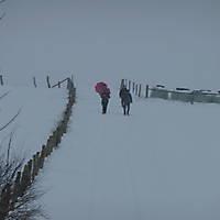 2010-12-05-Adventswanderung-007