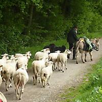 2012-05-06-Hermannshoehenweg-3-Teil-005