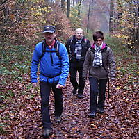 2013-11-17-Hermannshoehenweg-6-001