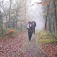 2013-11-17-Hermannshoehenweg-6-006