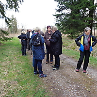 2014-03-23-Wanderung-Neuenheerse-006
