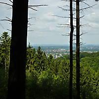 2014-05-18-Hermannsweg-7-Teil-005