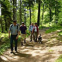 2014-05-18-Hermannsweg-7-Teil-007