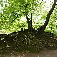 2014-05-18-Hermannsweg-7-Teil-030
