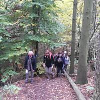 2015-10-24-Edersee-035