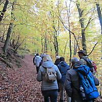 2015-10-24-Edersee-058