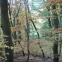 2015-10-24-Edersee-120