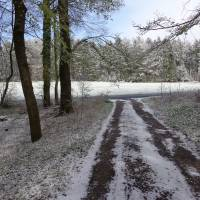 2016-04-24-Klimaweg-Verlmerstot-019