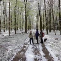 2016-04-24-Klimaweg-Verlmerstot-020