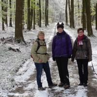 2016-04-24-Klimaweg-Verlmerstot-021