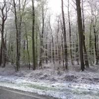 2016-04-24-Klimaweg-Verlmerstot-022