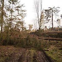 Kyrill-Bodental-2007-007