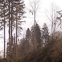 Kyrill-Bodental-2007-018