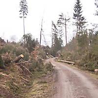 Kyrill-Bodental-2007-023