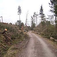Kyrill-Bodental-2007-025