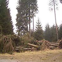 Kyril-Emderwald-2007-033