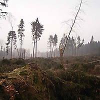 Kyril-Emderwald-2007-043