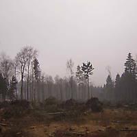 Kyril-Emderwald-2007-044