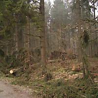 Kyril-Emderwald-2007-050
