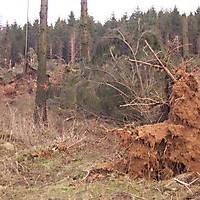 Sturm-Kyril-2007-001
