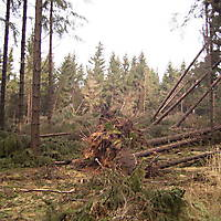 Sturm-Kyril-2007-007