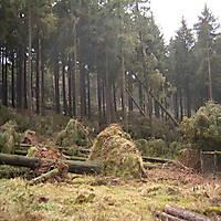 Sturm-Kyril-2007-010
