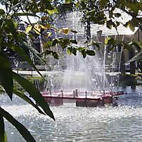 2008-08-31-Einweihung-Priggers-Teich-008