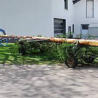 2010-05-01-Maibaumaufstellen_001