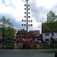 2010-05-01-Maibaumaufstellen_067